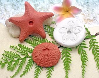 Essential Oil Stones / Room Diffuser / Essential Oil Gift / Diffuser Stones / Beach Decor / Starfish Decor / Terracotta Stones for Oils
