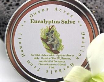 Chest Rub, Eucalyptus Herbal Chest Rub Salve - Soothing Relief, Stuffy Head,  Congestion, Chest Rub, Herbal Salve, Skin Salve, Sniffles