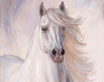 Andalusian horse-Canvas Art-White Horse- giclee on canvas-'Ambrosia'