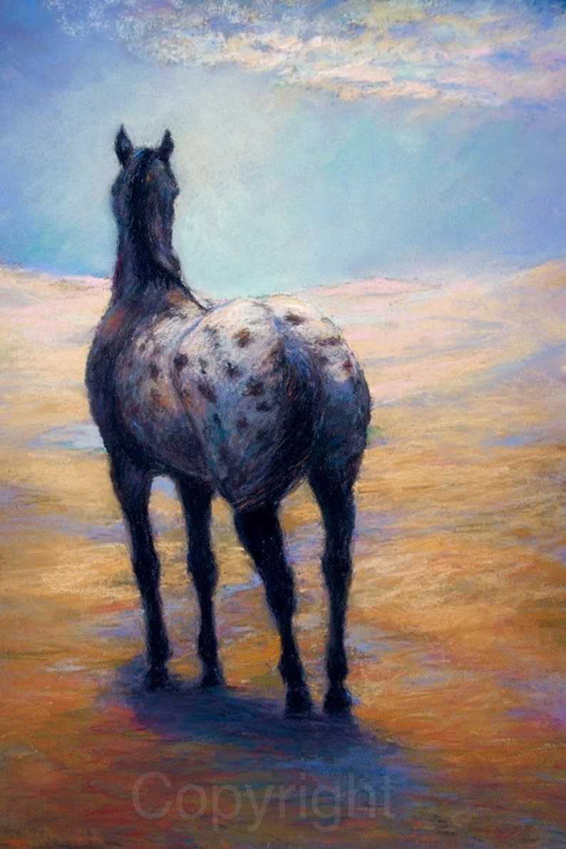 Appaloosa Horse Art On Canvas Or Paper Of Clouds Become Etsy