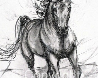 "Horse Charcoal Drawing-Horse Decor-Horse Fine Art-""Coming Through"""