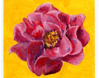 Floral Art Print Pink Flower Camellia 8x8 or 12x12 Giclee Print of an Acrylic Painting