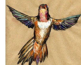 hummingbird 8X10 or 9X12 print - bird art mixed media drawing