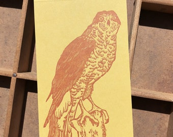 letterpress Northern Goshawk jotter notepad