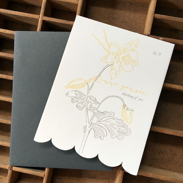 letterpress thinking of you aquilegia card