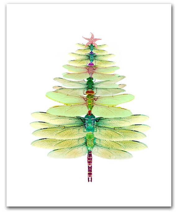 Christmas Tree Cards Designs.Dragonfly Tree Cards Winter Solstice Card Christmas Tree 10 Per Box Holiday Card Set Woodland Christmas Dragonfly Christmas Card