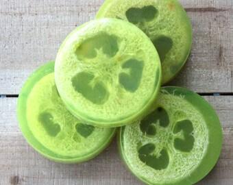 Key Lime Loofa Soap