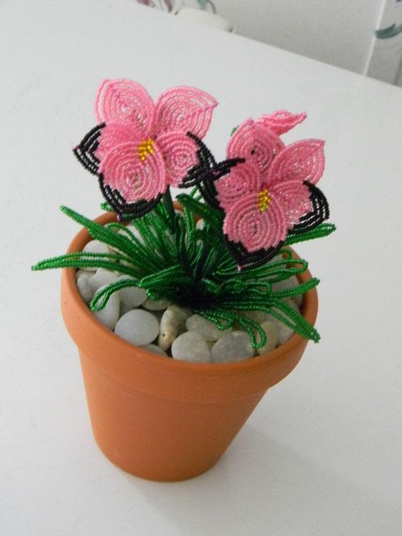 Französische Perlen Blumen Topfpflanzen Stiefmütterchen | Etsy