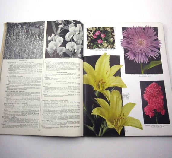 Vintage 1940s Wayside Gardens Catalog Gardening Seed Plants