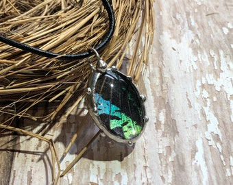 Butterfly Pendant, Soldered Glass Oval, Bubble Glass, Two Sided Cabachon, Real Butterfly Wing Jewelry