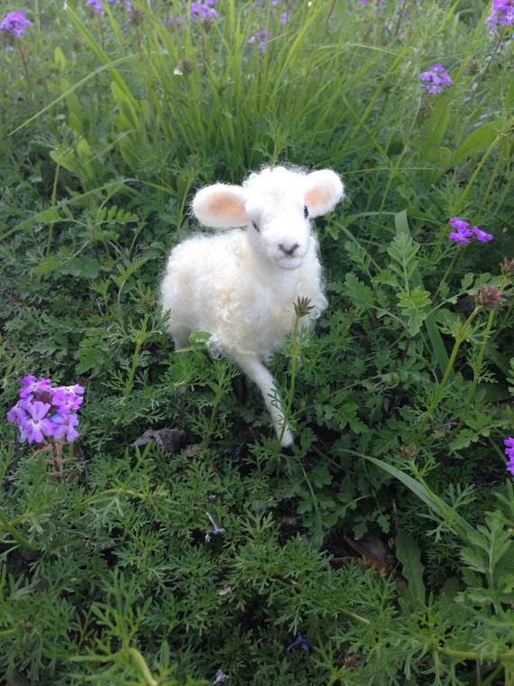 Newborn Needle Felted Lamb