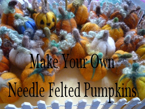 DIY Pumpkins Needle Felting Kit Fall Autumnal Gift