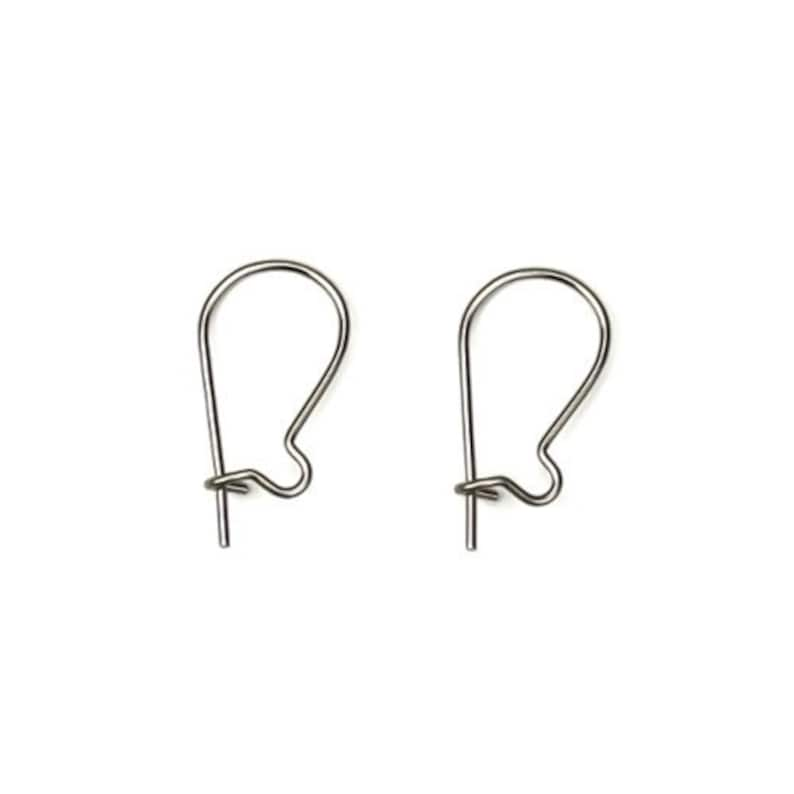 Surgical Stainless Steel Small Kidney Ear Wires 12 FI523 image 0