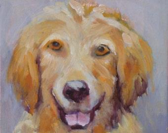 Pet Portrait// Yellow Dog//Original Oil Painting//6 x 6 Unframed