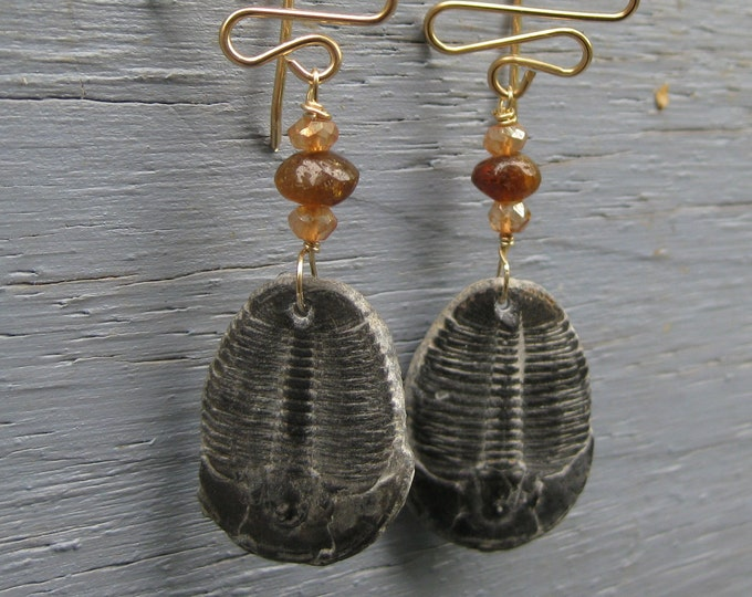 Insouciant Studios Ripple Trilobite Earrings 300 Million Years Old