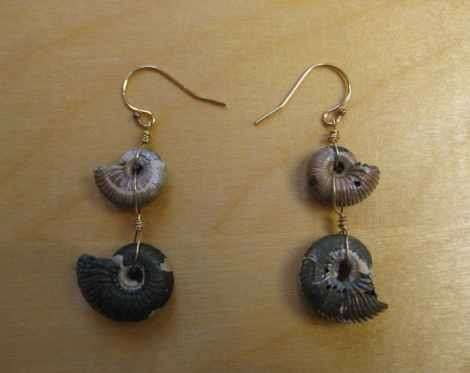 Insouciant Studios Pyrite Ammonite Earrings