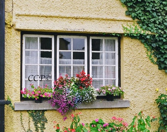 Irish Artwork, Fine Art Window Ireland, 8 x 10 Photography, Home Decor, House Print, Wall Art,