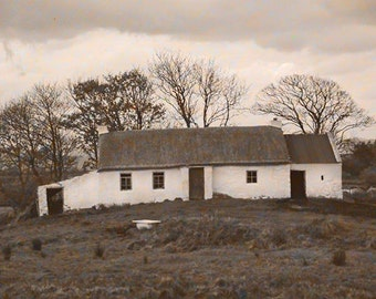 Ireland Original Fine Art Photography, Thatched Cottage, Irish Decor, Sepia Style Print, Bathroom Tub, Cows And Water