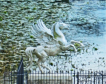 Fine Art Pegasus Photography, Wicklow Mountains Ireland, Powers Court Gardens, 8 x 10 Irish Decor, Wall Art
