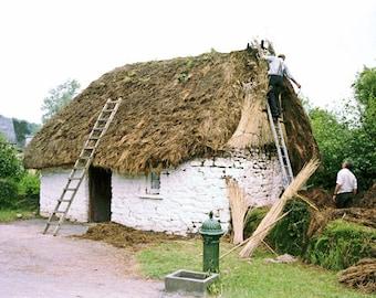 Fine Art Thatching A Cottage, Ireland Photography, Irish Farm, 5 x 7 Photo, Wall Art, Landscape Print