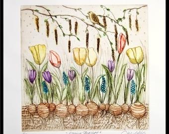 etching, Spring Ballet, spring flowers, spring bulbs, handprinted, signed, Mariann Johansen-Ellis