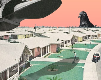 Suburbia, Abstract collage, mid-century, comic, foot, suburb, pigeon, houses, street, pink, pastel, grey, green