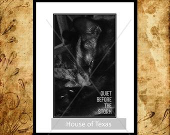Quiet Before the Storm - Printable - Black Cat - Cat Printable - Modified Photo - Cat Art - Cat Gift - Cat Decor - Cat Print - Cat Lovers