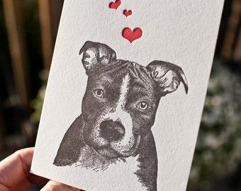 Pit Bull Love. Letterpress card of hand illustrated pit bull.