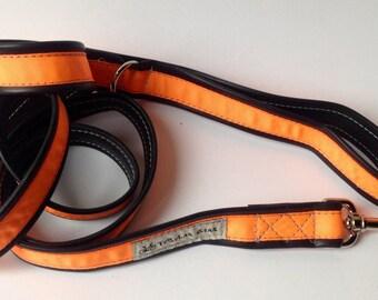 Neon Orange Leash
