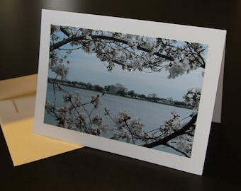 Cherry Blossoms & Jefferson Monument photo card
