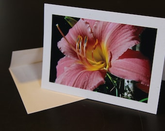 Pink Lily (photo card)