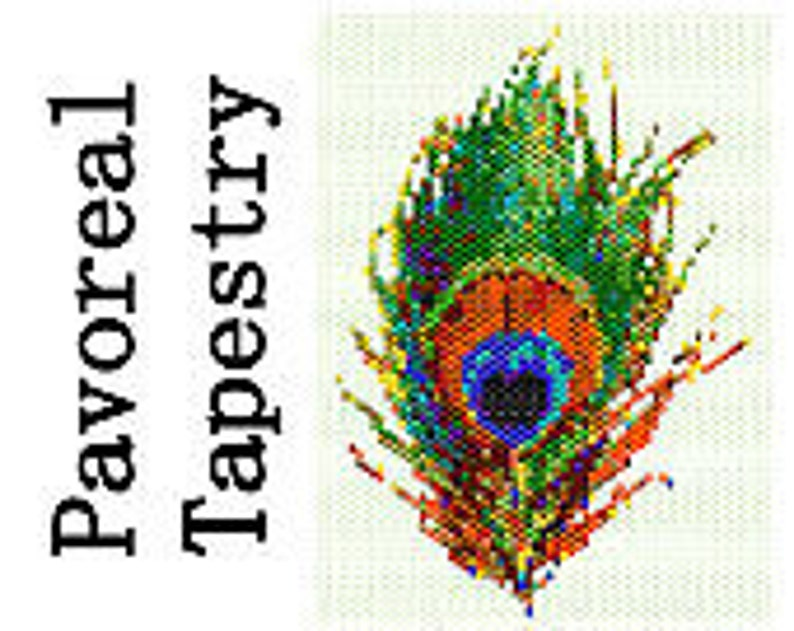 Peyote Pattern Pavoreal Peacock Feather Delica Seed Bead image 0