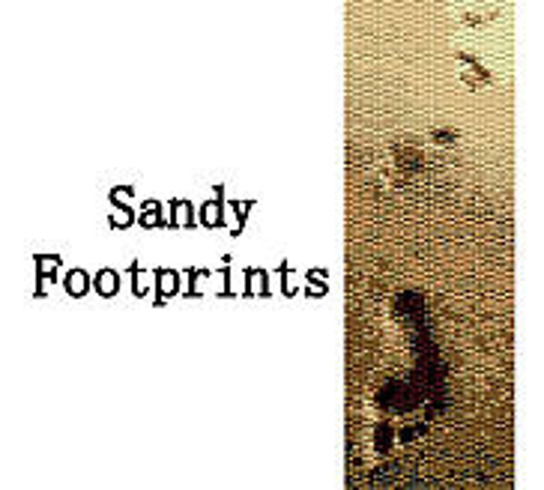 Peyote Bracelet Pattern Footprints in the Sand Beaded Peyote image 0