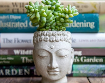 Buddha Head Planter, Buddha Plant Pot, Buddha Succulent Planter, Buddha Face Planter, Concrete Head Planter, Head Planter Pot, Head Planter