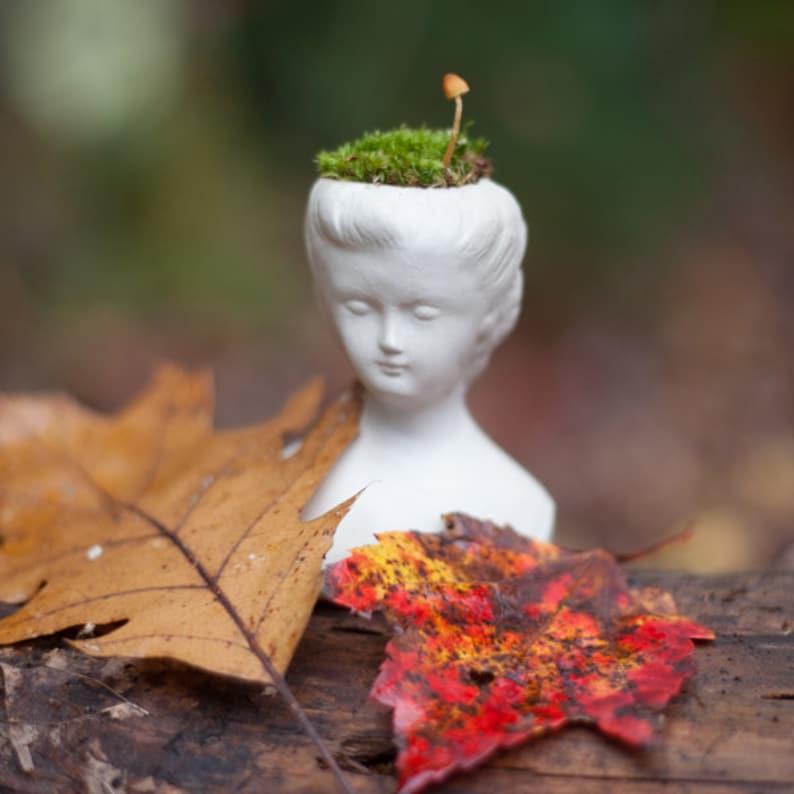 Head Planter Doll Head Planter Lady Head Planter Head Air image 0