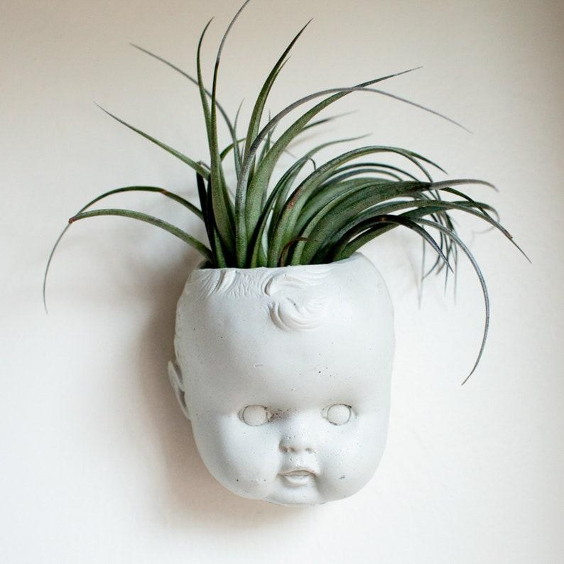 Doll Head Wall Planter Concrete Baby Head Air Plant image 0