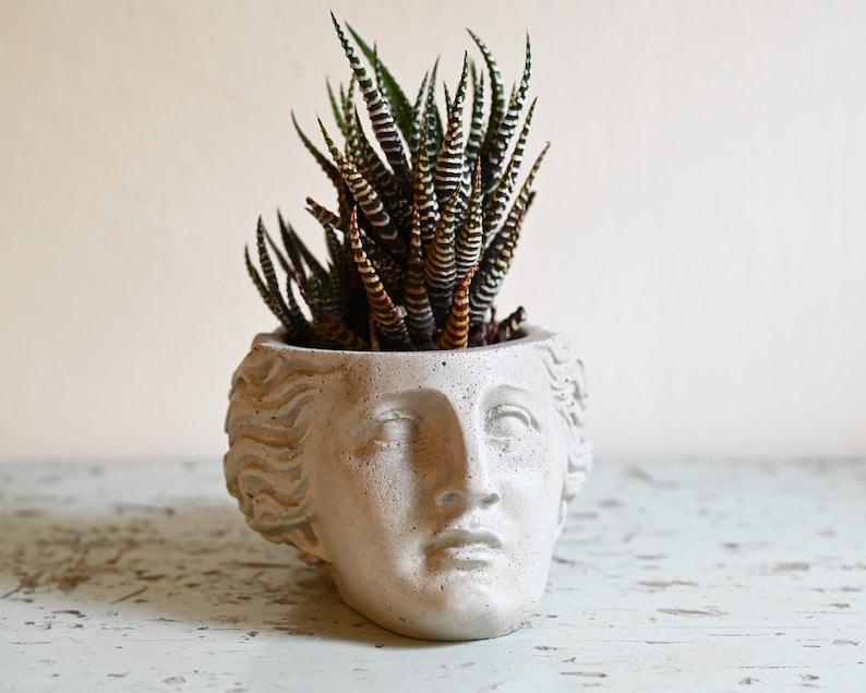 Venus Planter Roman Goddess Greco-Roman Head Succulent image 0