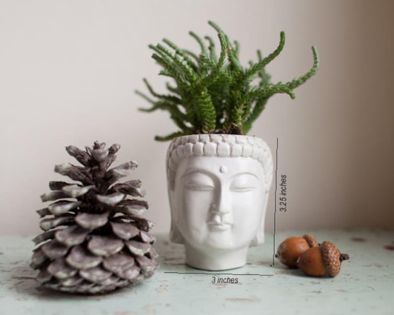 Small Buddha Head Planter  Buddha Head Planter 1 image 0