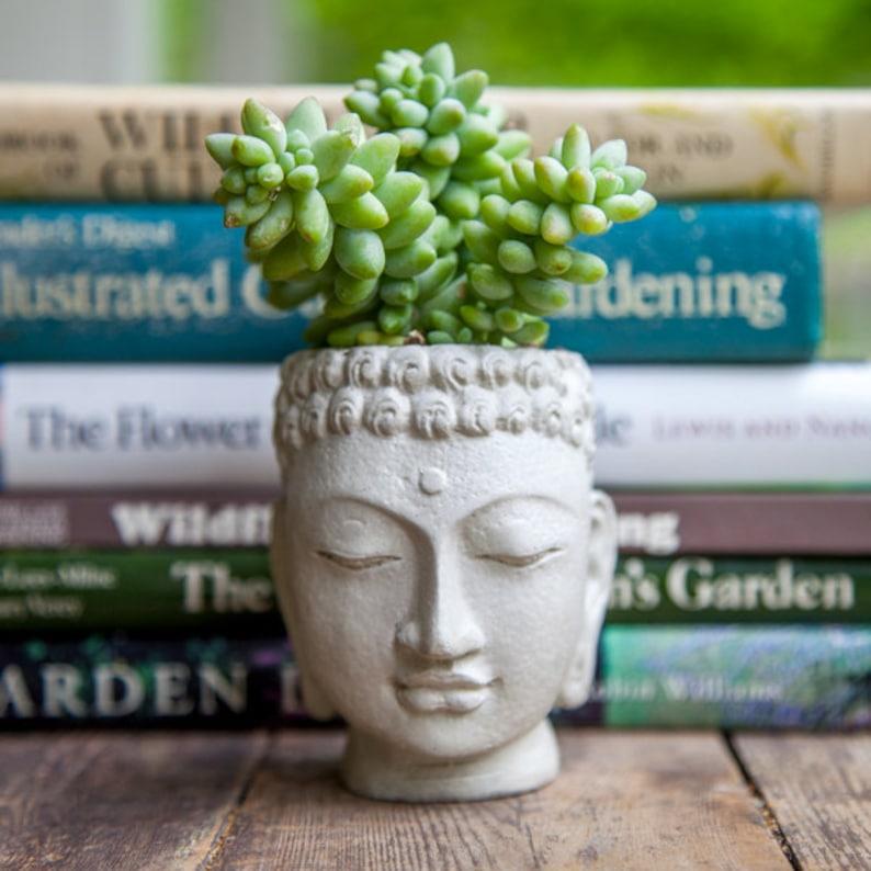 Buddha Head Planter  small cement pot  Buddha Head Planter image 0