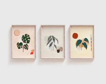 Mid Century Monstera Plant Print Set of 3 4x6 Art Philodendron Begonia Swiss Cheese Plant Mini Prints Retro Modern