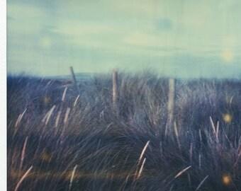 Malahide Beach, Ireland, Nautical, SX70, Polaroid Photography, Vintage, Home, Office, Decor, Original, Landscape, Grass in the wind, Poetic