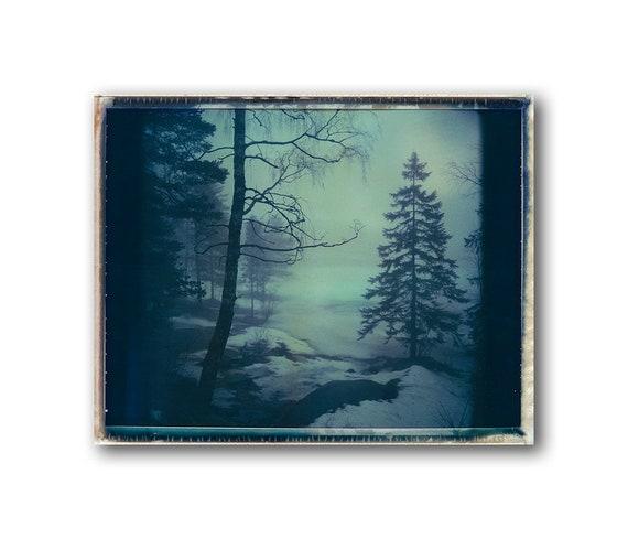 Norway, Old Polaroids, Mamiya, Polaroid Photography, Winter, Eerie, Misty, Woods, lake, Viking Landscape Photography, Trees, Norwegian