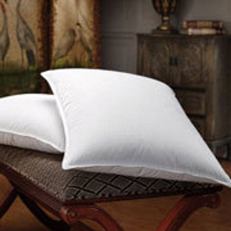 Feather and Faux Feather Pillow Inserts  You pick the size image 0