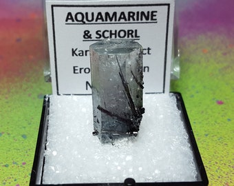 AQUAMARINE And Black Tourmaline (Schorl) Natural Terminated Crystal In Perky Mineral Specimen Box From Namibia