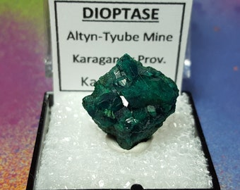 SALE DIOPTASE Bright Teal Blue Green Crystals On Both Sides Mineral Specimen In Perky Box From Kazakhstan