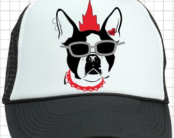ad6f32eb0eca4 Punk  Rock Dog Hat (2 options)