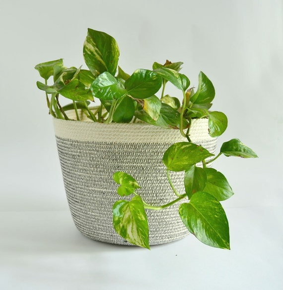 Cotton rope pot, Indoor planter, Simple decor basket, Planter basket, Rope coil basketry, Gifts for the home, Pot basket, Coastal basket