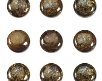 Dakota Stones Bronzite 10mm Round Cabochon Gemstones. CAB- BRZ10DC