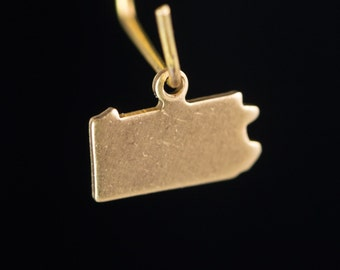 Raw Brass Tiny Pennsylvania Blank State Charm Drops (2) chr229K
