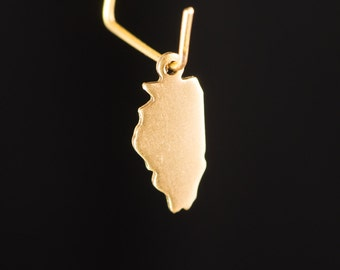 Raw Brass Tiny Illinois Blank State Charm Drops (2) chr229G